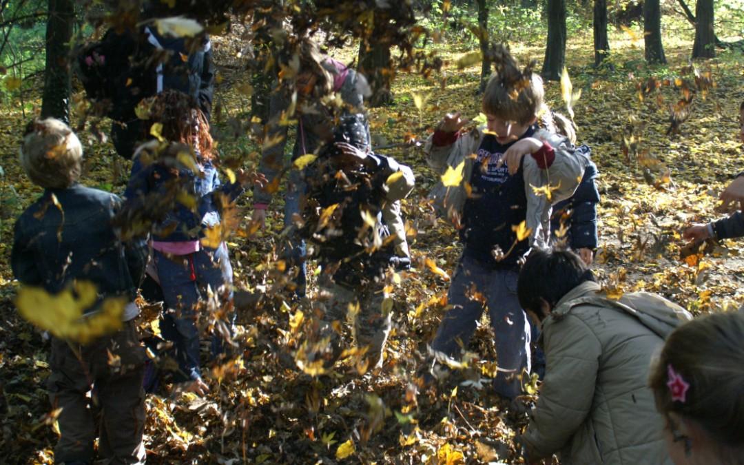 Offene Herbstführung  für Kinder (6-10-Jährige) in Begleitung