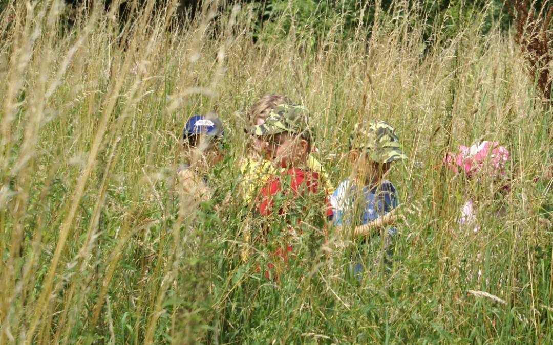 Offene Führungen für Kinder (6-10-Jährige) in Begleitung