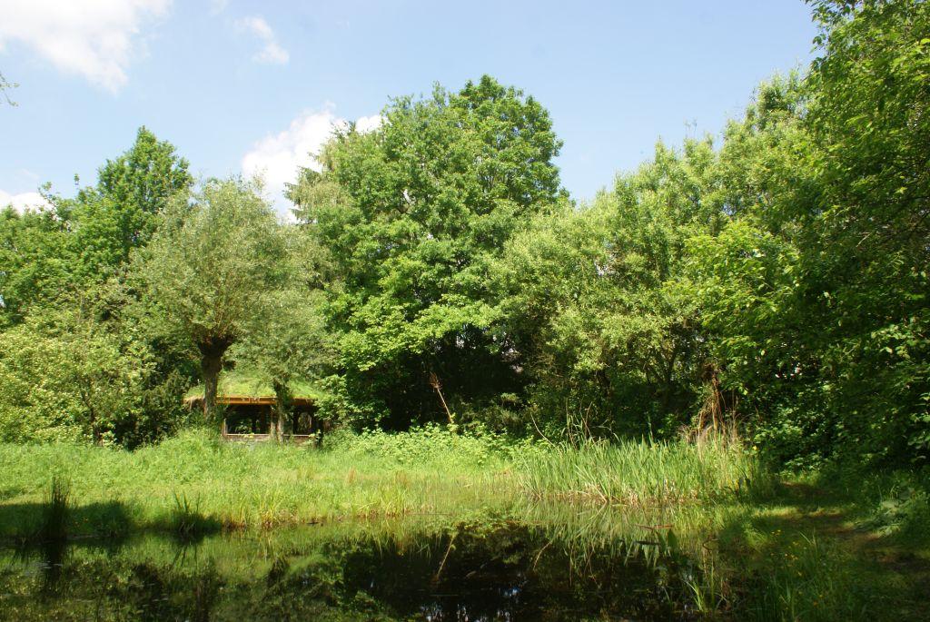 Huette am Teich