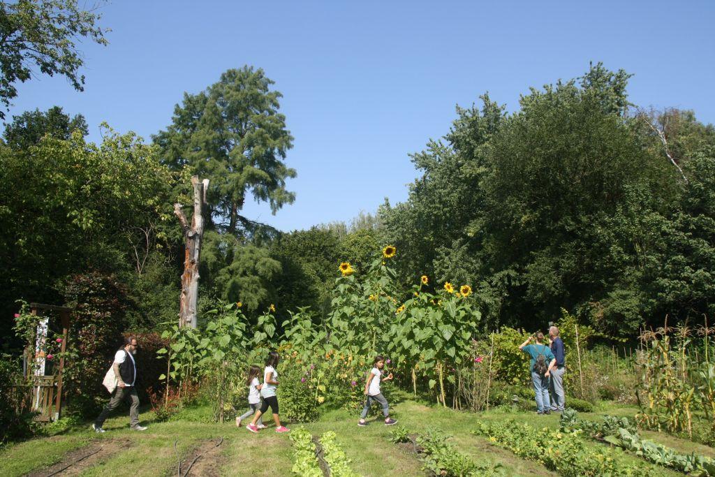 Kolpings Pflanzgarten