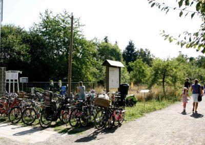 02 - Viele sind umweltfreundlich mit dem Rad gekommen