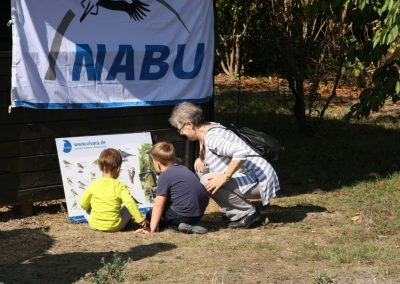 03 - NABU Arbeitskreis Vogelschutz