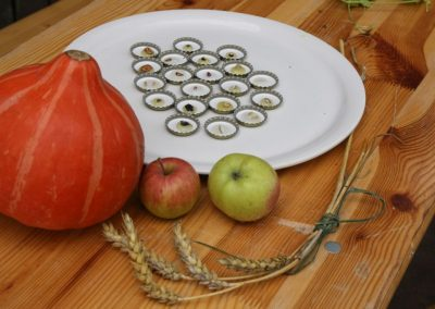 22 - Samenmemory - welche Frucht gehört zu welchem Korn