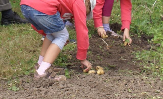 Interkulturelles Fest für Familien mit Kindern von 5-12 Jahren in Finkens Garten