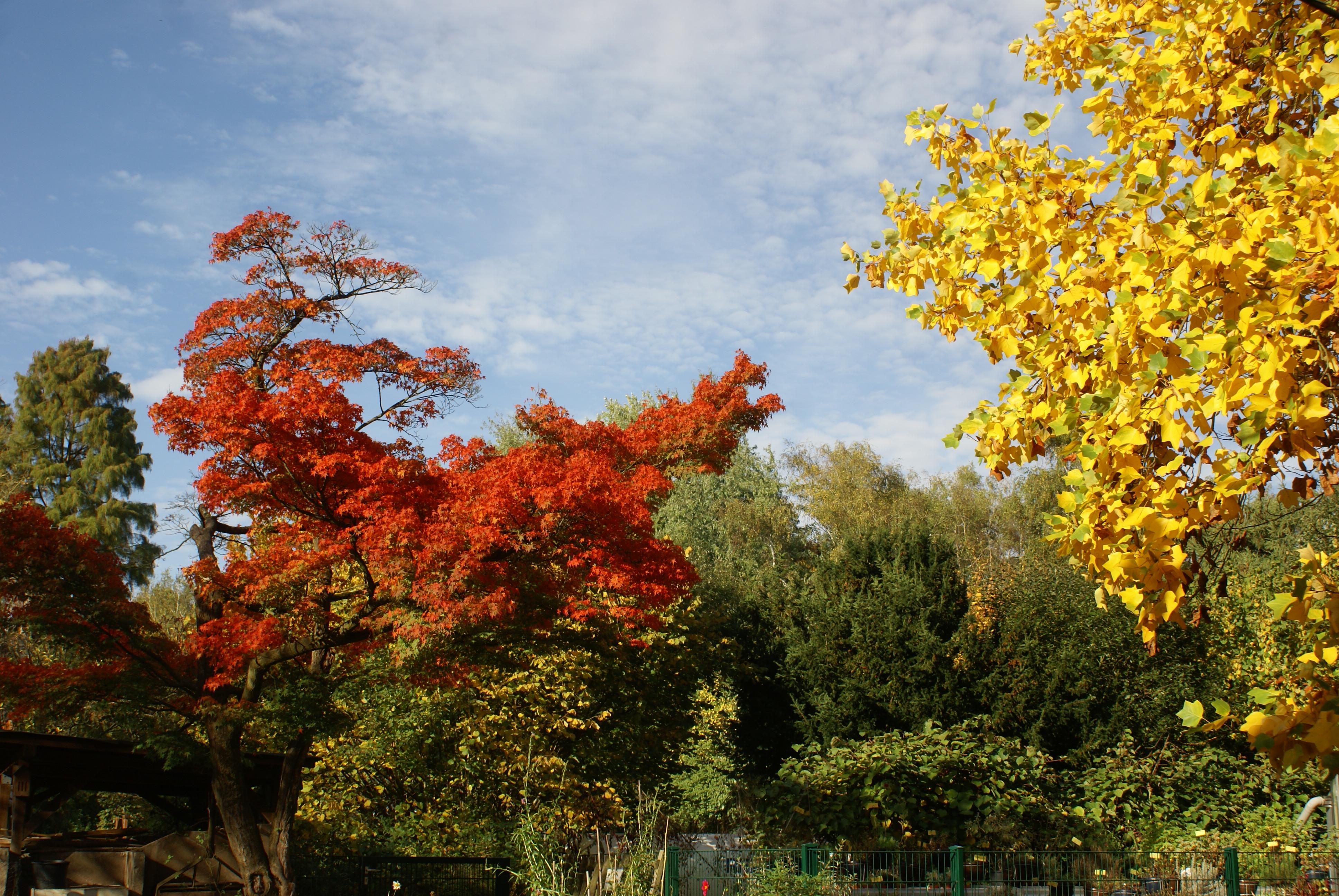 Offene Herbstführung für Erwachsene