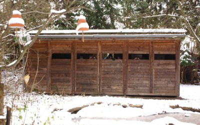 Vogelbeobachtungshütte