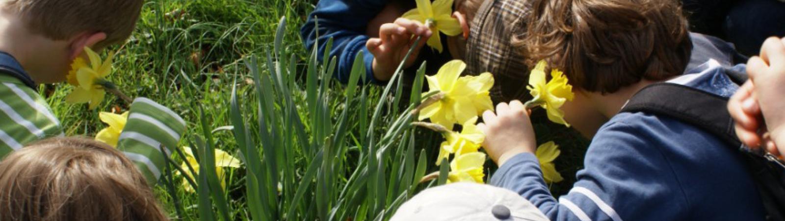 ABGESAGT - Gartenmusik für Kinder