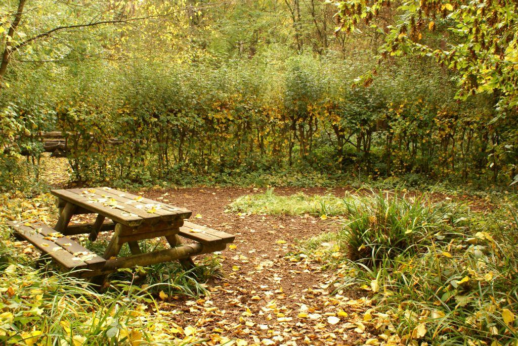 Nasengarten im Herbst